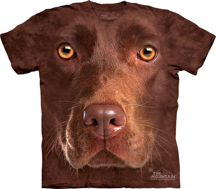 Themountain Com Chocolate Lab T Shirt Big Face Chocolate Lab