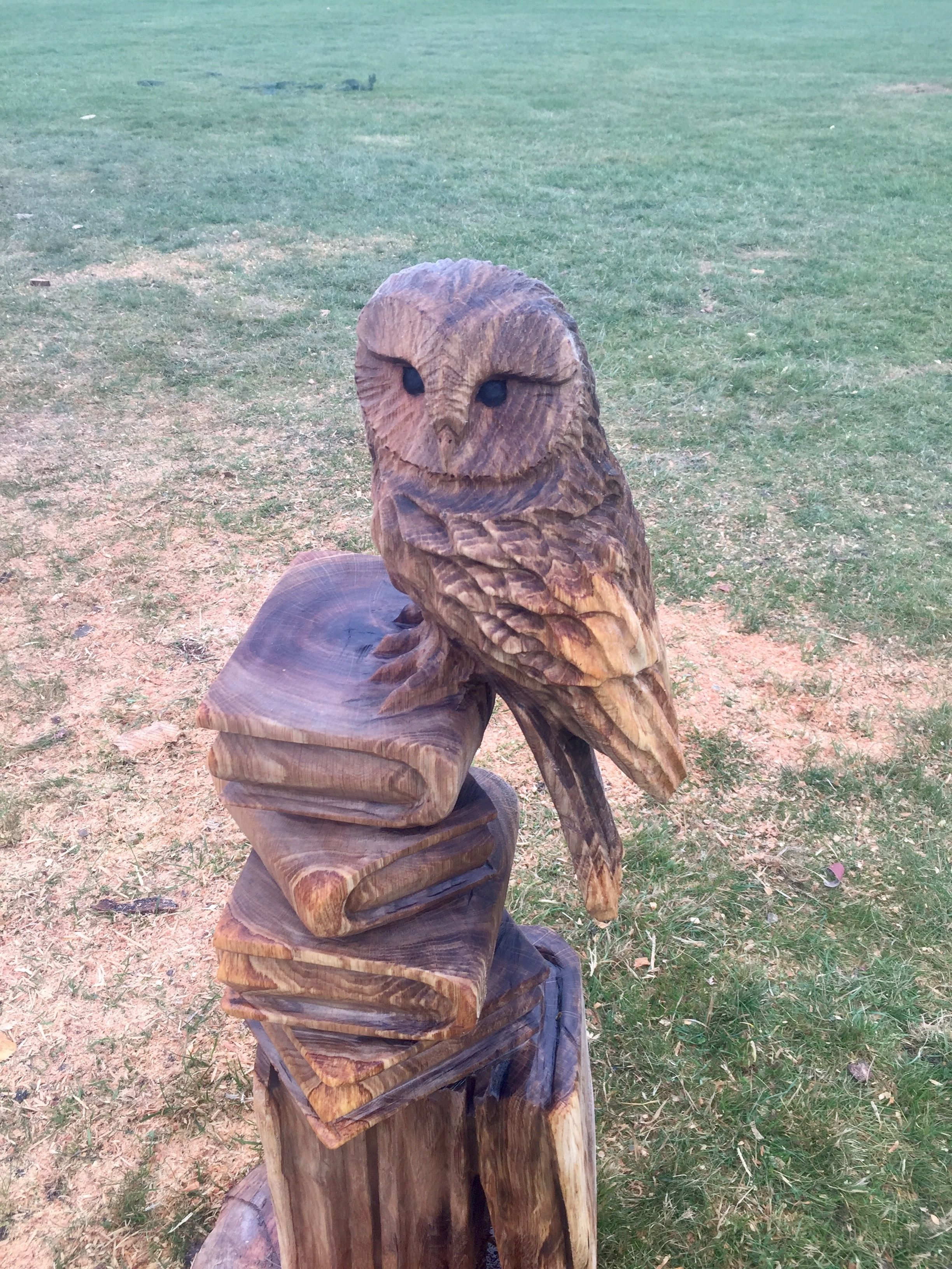 Ever ready chainsaw carving event and another stargazer treat