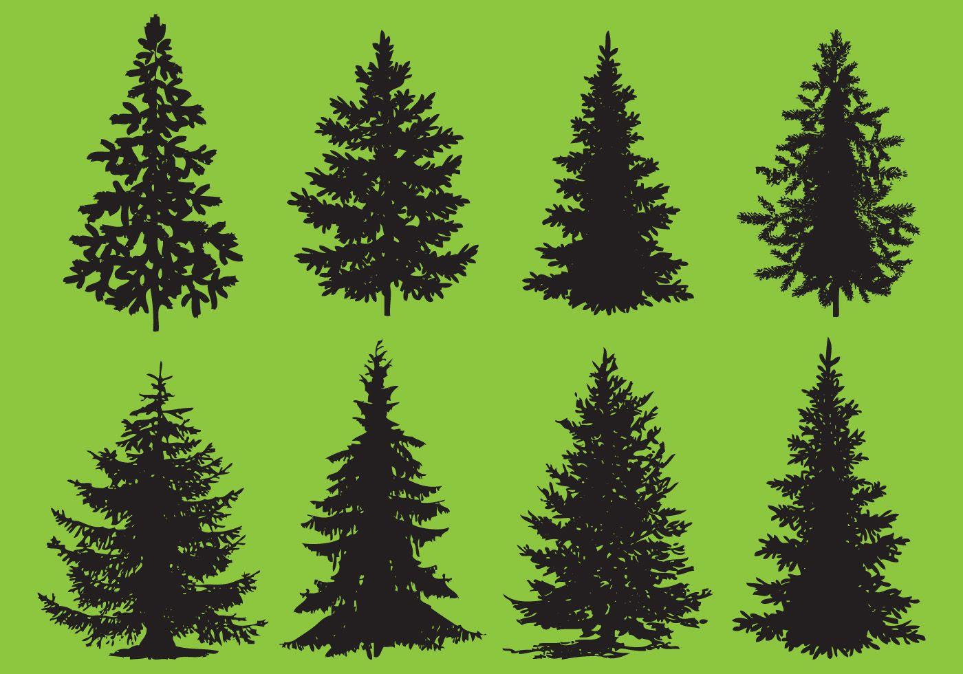 Pine Tree Vector Best Clipart Gallery • Free vector