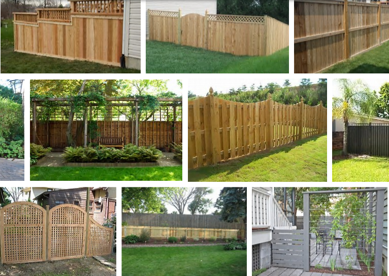 Are You A Homeowner In Need Of Privacy In Your Backyard It Is