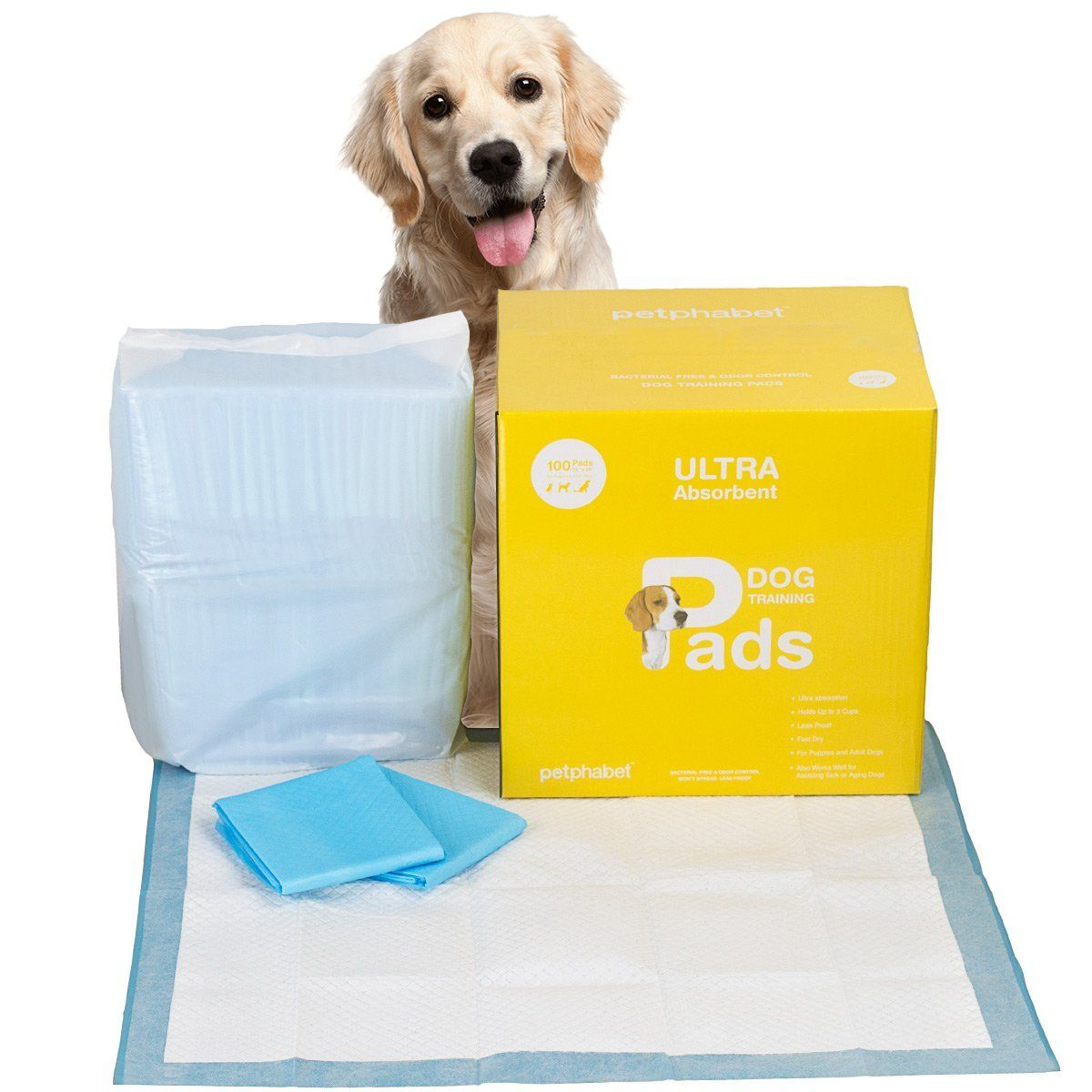 Free Puppy Pad Sample Puppy Pads Puppy Training Puppy Pads