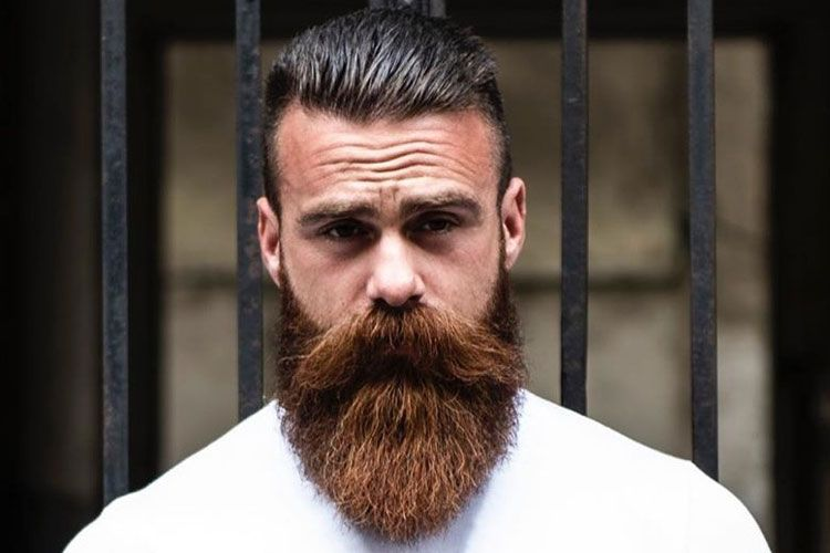 10 Best Beard Straighteners For Men 2020 Reviews Buying Guide