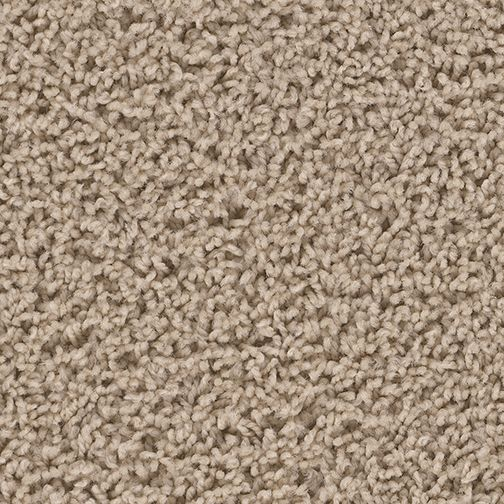 Standard Carpet Style Mainstream Color Dusk