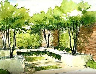 Tree Depressed In Ground Landscape Design