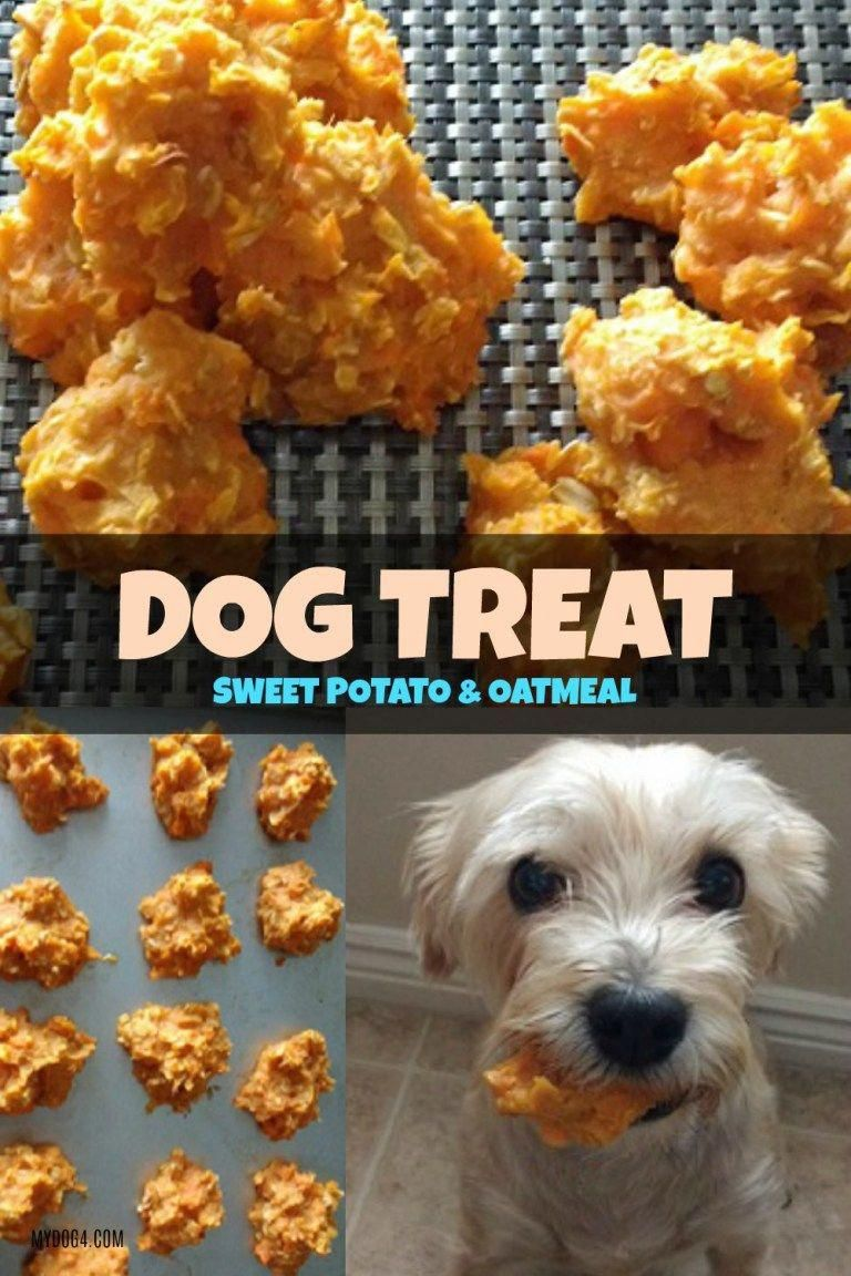 Dog Treat Sweet Potato Oatmeal A Snorkey Day Dogtreats