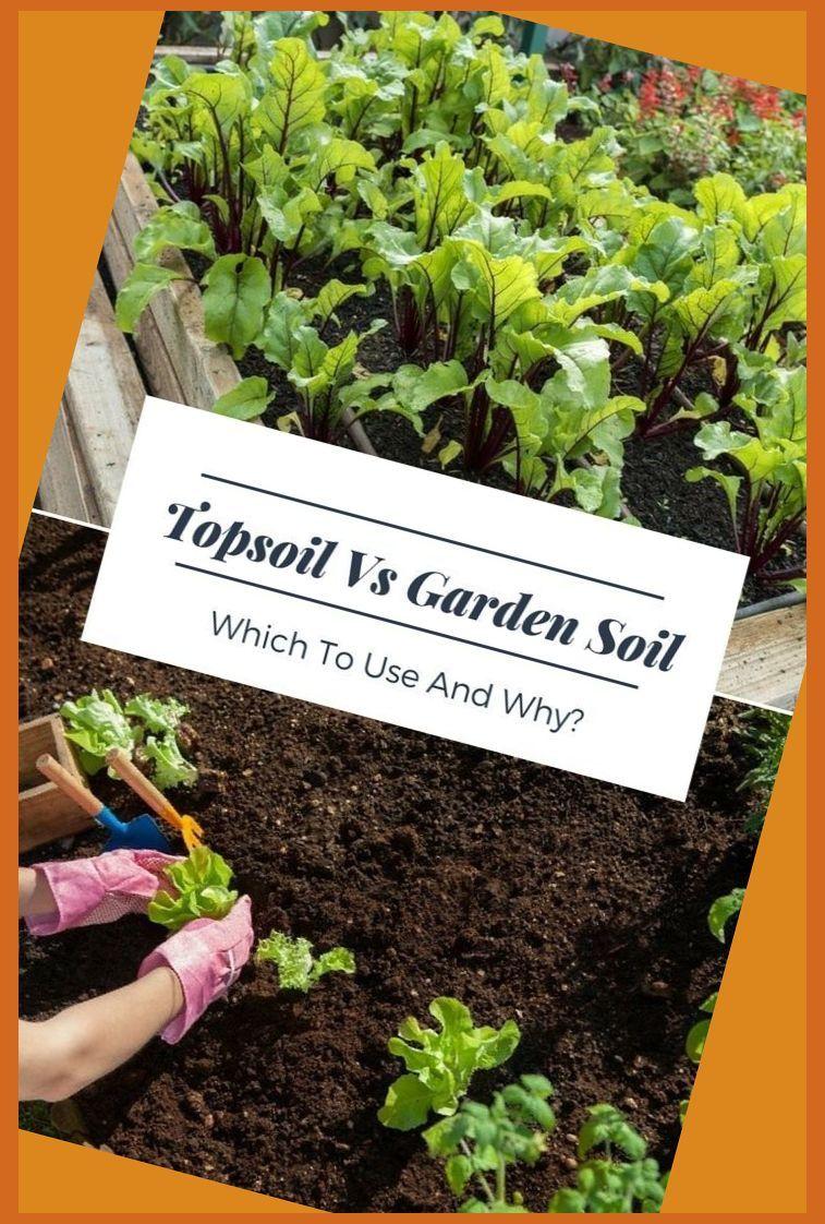 Garden Soil Prep Work For Home Garden Garden Soil Vegetable Garden Planning Organic Vegetable Garden