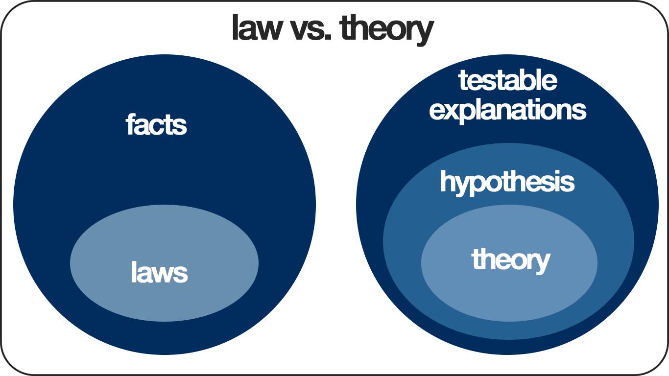 Law Vs Theory Diagram Theories Eco Fashion Fashion Encyclopedia