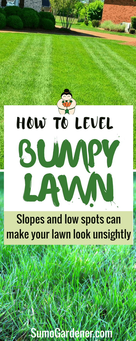 How To Level a Bumpy Lawn - Causes and Fixes | Sumo Gardener