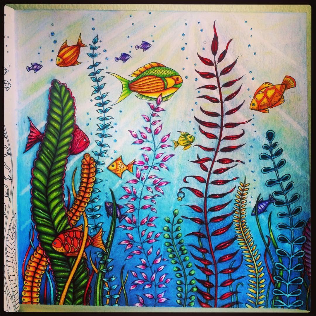 Under the sea #coloringbooksforadults #adultcoloringbooks… | Dibujo ...