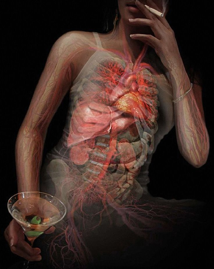 Smoking and drinking alcohol transparent human anatomy illustration ...