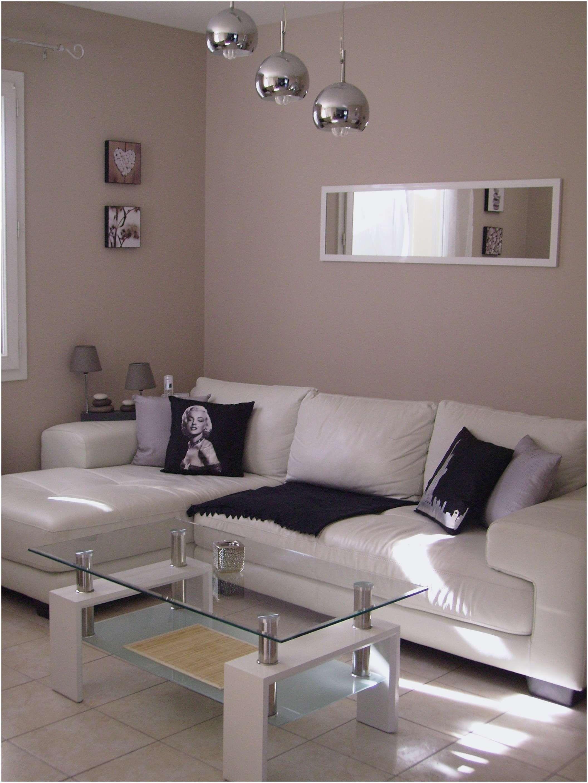 100 Fantastique Concepts Deco Salon Blanc Et Gris