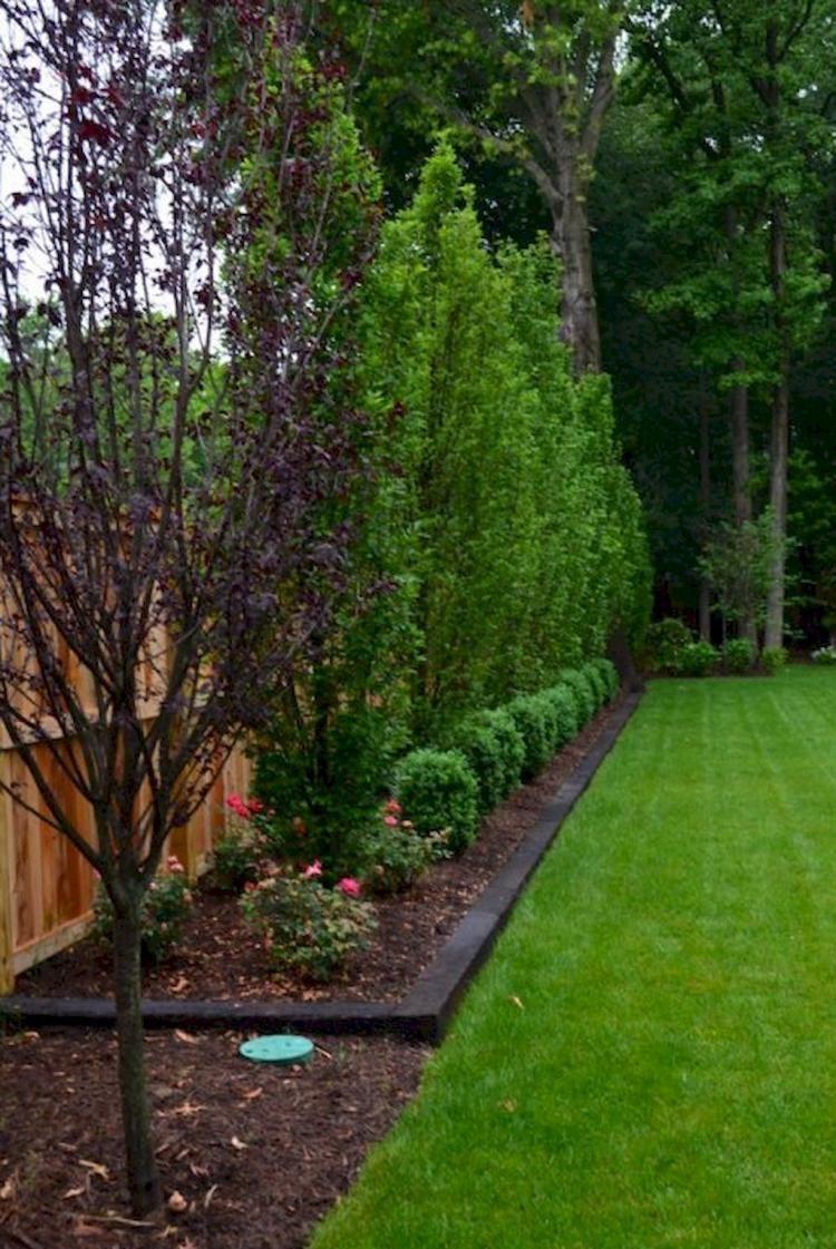 35 Beautiful Backyard Landscaping Ideas On A Budget Landscapeideaspatio Large Backyard Landscaping Privacy Fence Landscaping Fence Landscaping