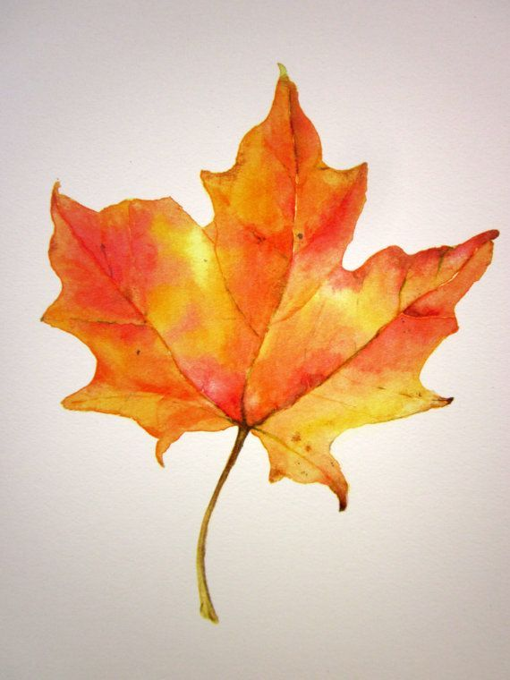 Leaf Original Watercolor Art Still Life Painting Fall Autumn