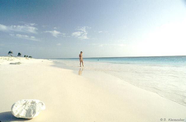 Pink Beach Bonaire Without A Doubt The Most Beautiful White Sand I