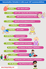 Image result for vaccination chart pic during pregnancy