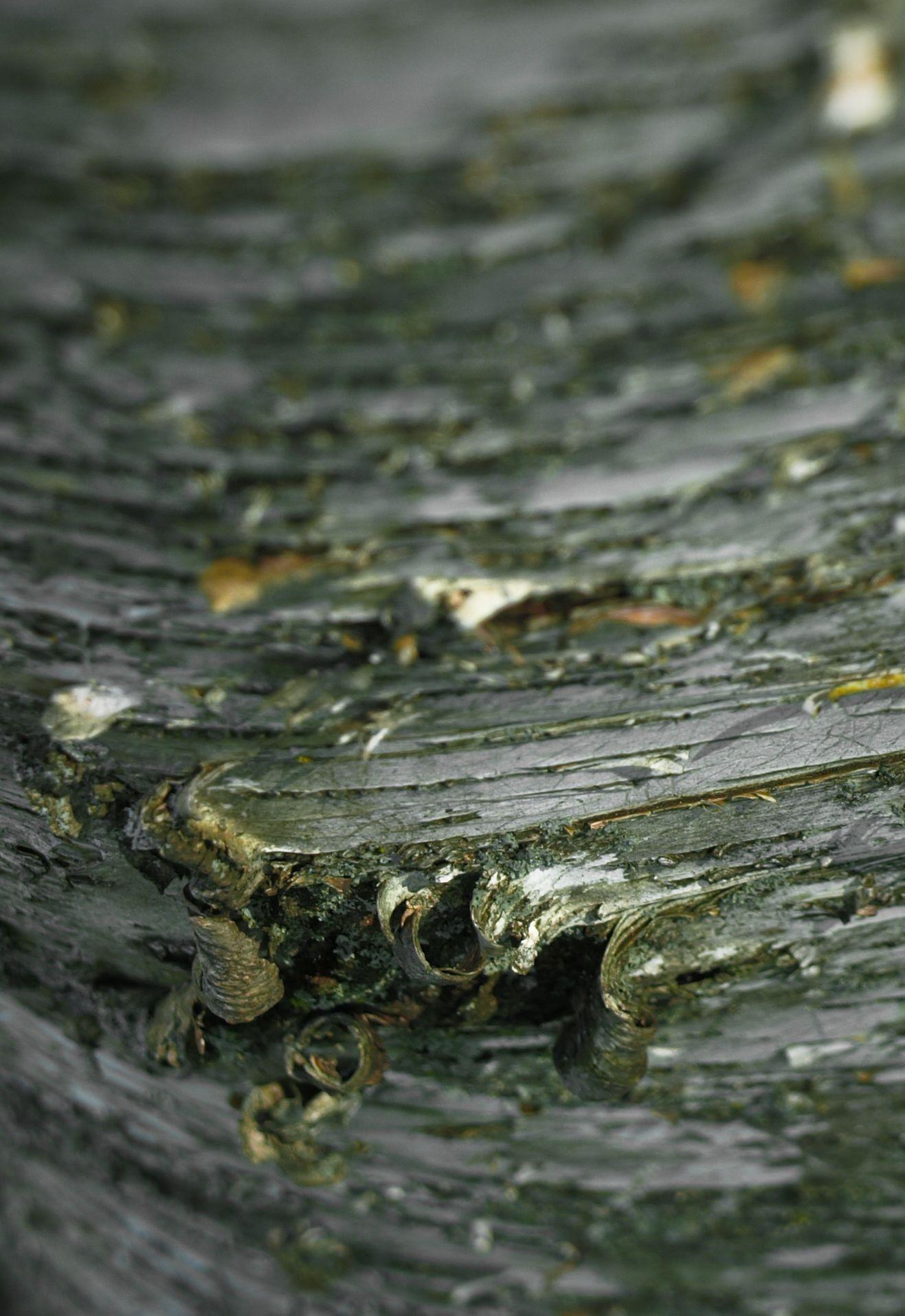 birch curls  jwls2012