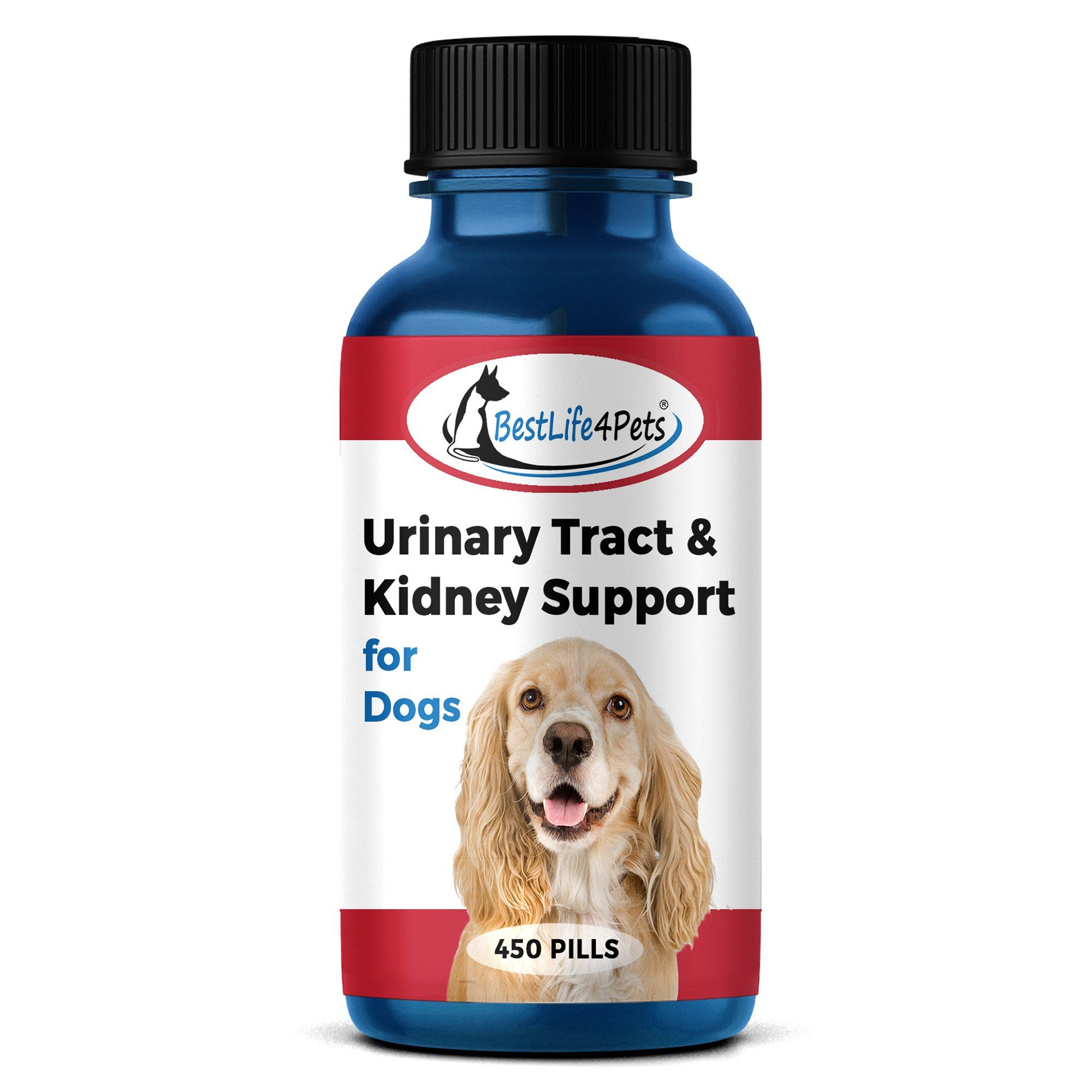 Urinary Tract Infection and Kidney Support Remedy for Dogs