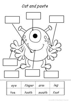 Body Human Parts Worksheet - Turtle Diary