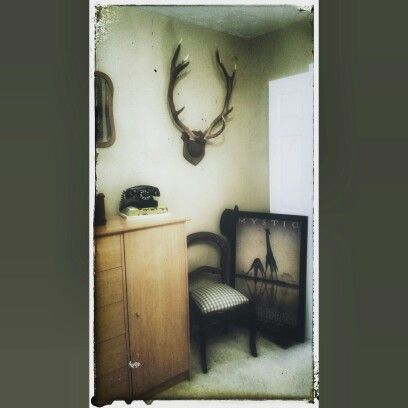 interior design with 1940s era rotary phone and red stag antlers