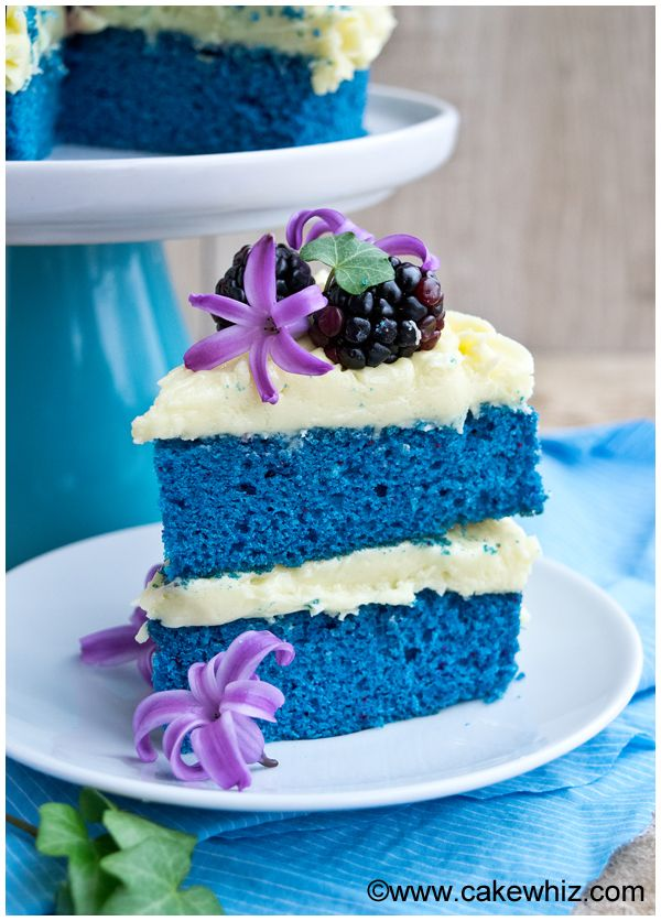 Learn how to make a NAKED BLUE VELVET CAKE with my step-by ...