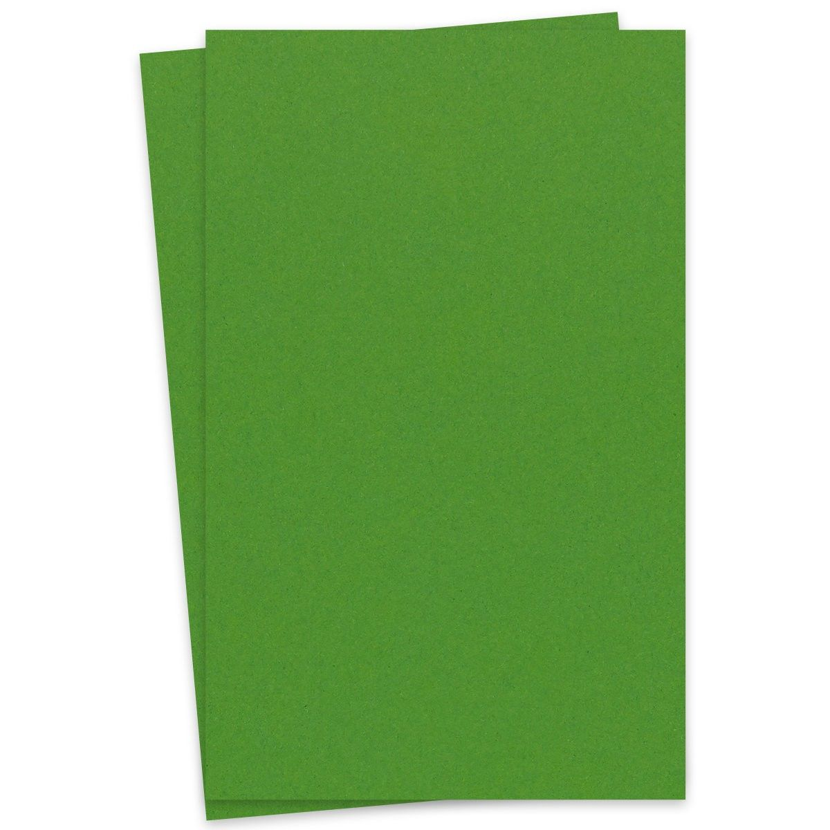 extract  cactus 11x17 ledger size cardstock paper 380