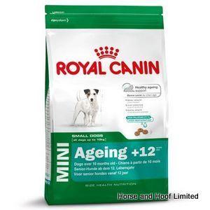 Royal Canin Mini Ageing 12 Dog Food 1 5kg Dog Food Recipes Dog
