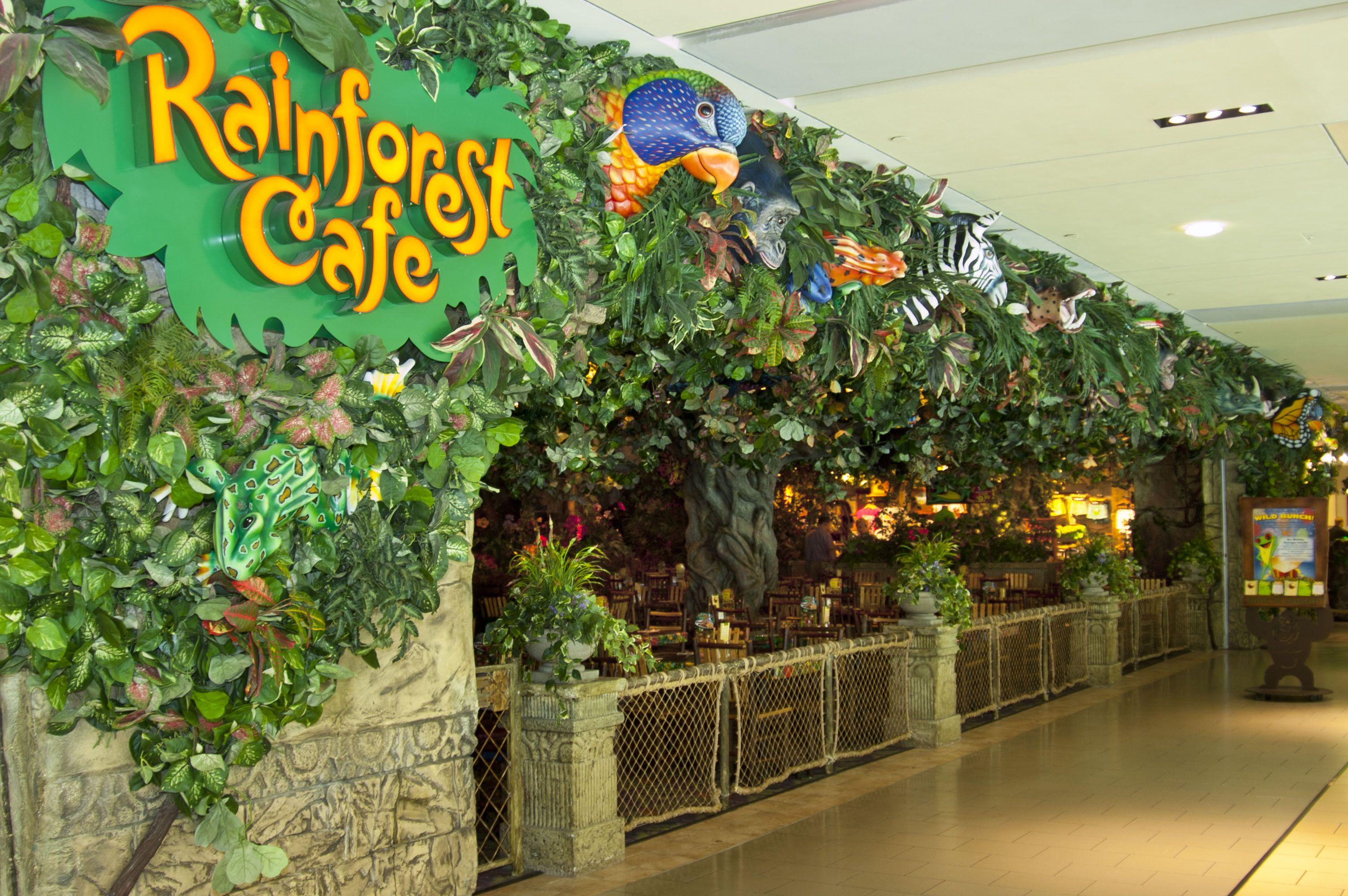 Houston Galleria Rainforest Cafe Rainforest Waterfall