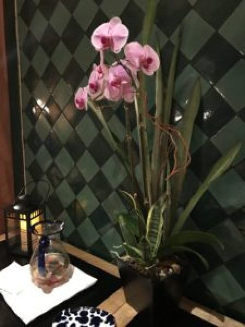 A Day at Rancho Valencia – PeaceLoveStyle