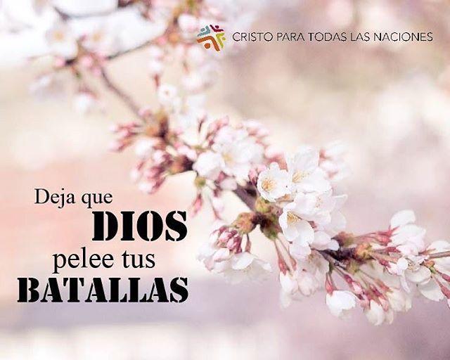 #batallas
