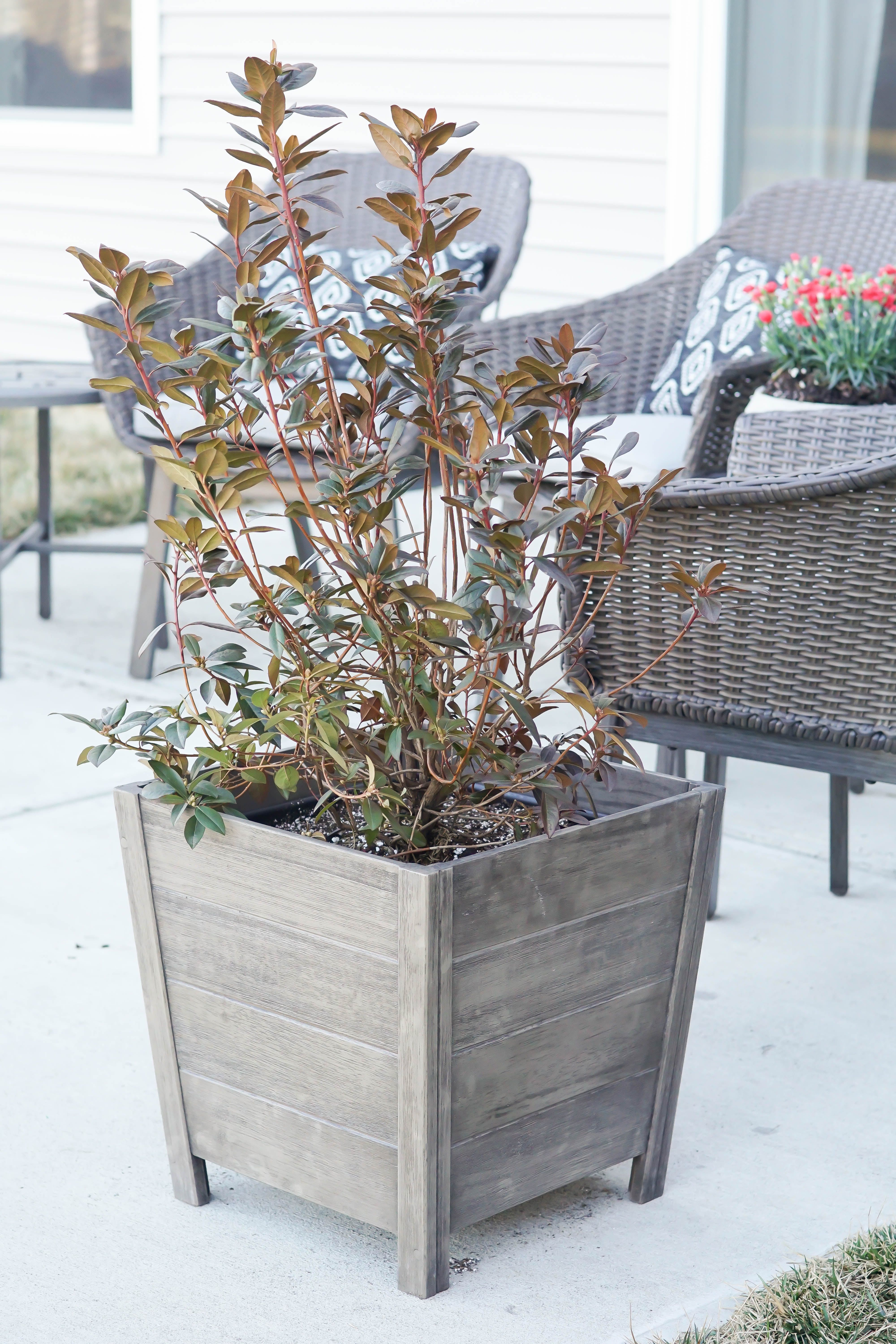 Cane bay outdoor planter large via simply designing