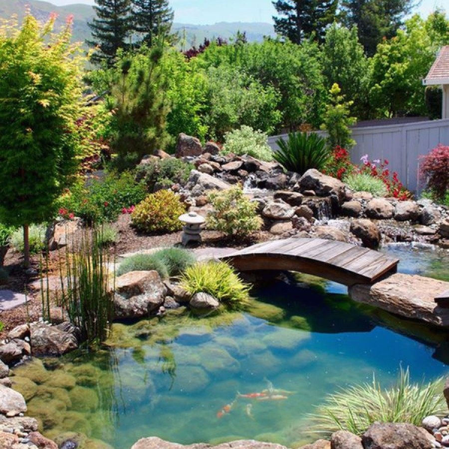 Awesome DIY Koi Pond Designs You Can