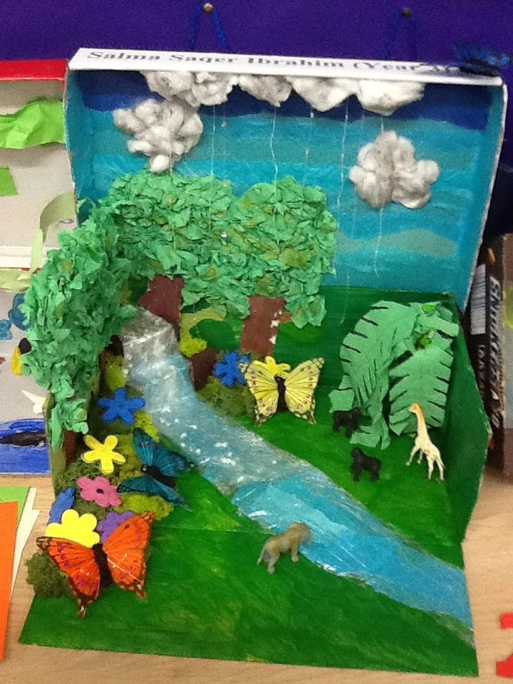 Creating Trees For A Rainforest Biome Box Google Search