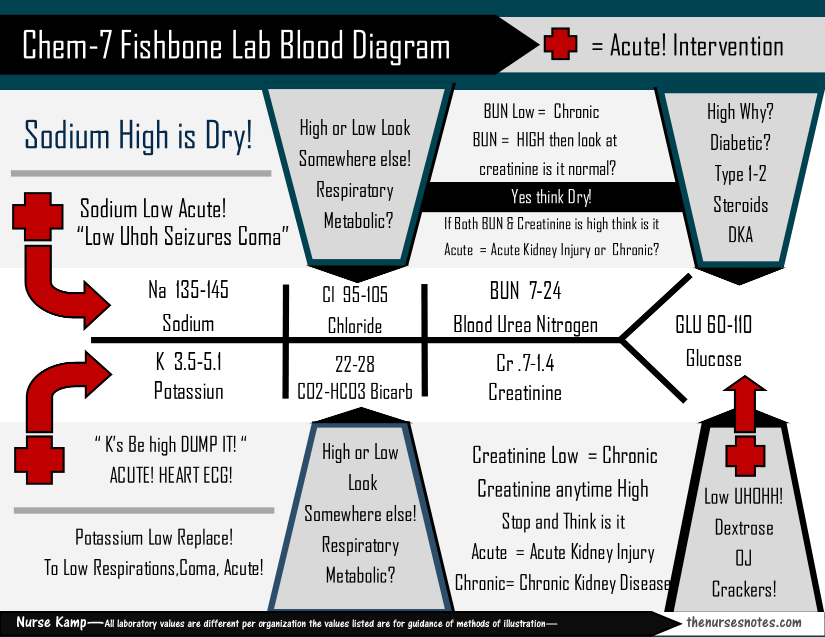 hight resolution of new design of the bmp chem7 fishbone diagram explaining labs from the blood book theses are the labs you should know hyponatremia sodium lab value blood