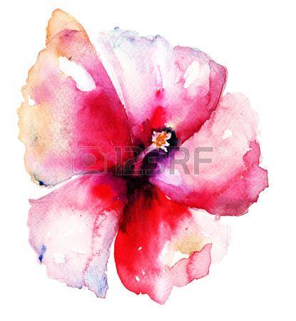 Red Hibiscus Flower Tattoo Design Pencil Drawings Of Flowers Hibiscus Flower Drawing Flower Drawing