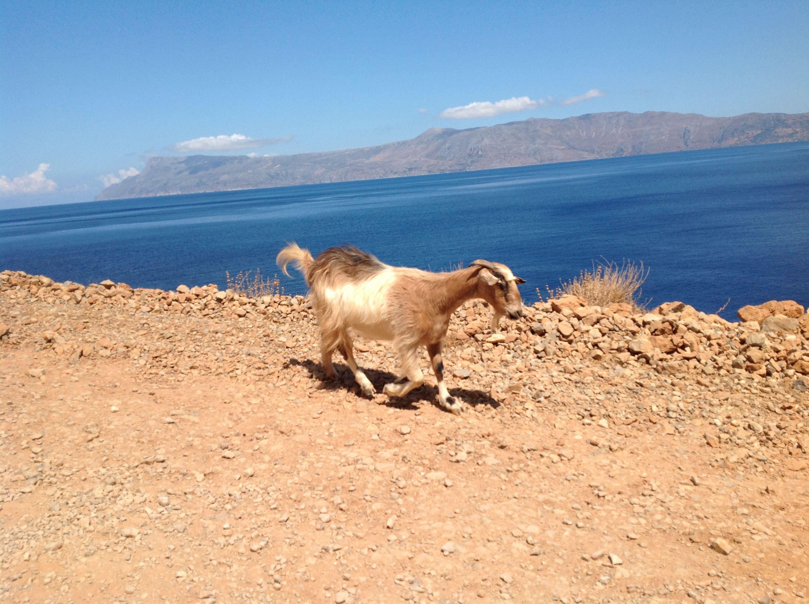 Creta, che caldo!