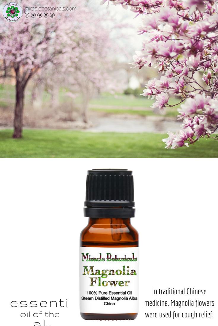 Magnolia Flower Essential Oil 100 Pure Therapeutic Grade Essential Oil Benefits Essential Oils Essential Oil Education