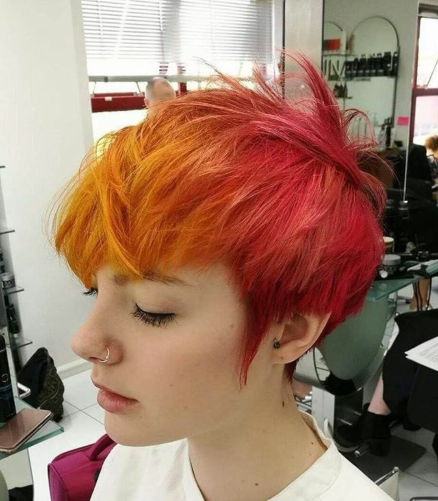 31++ Short sunset hair color trends