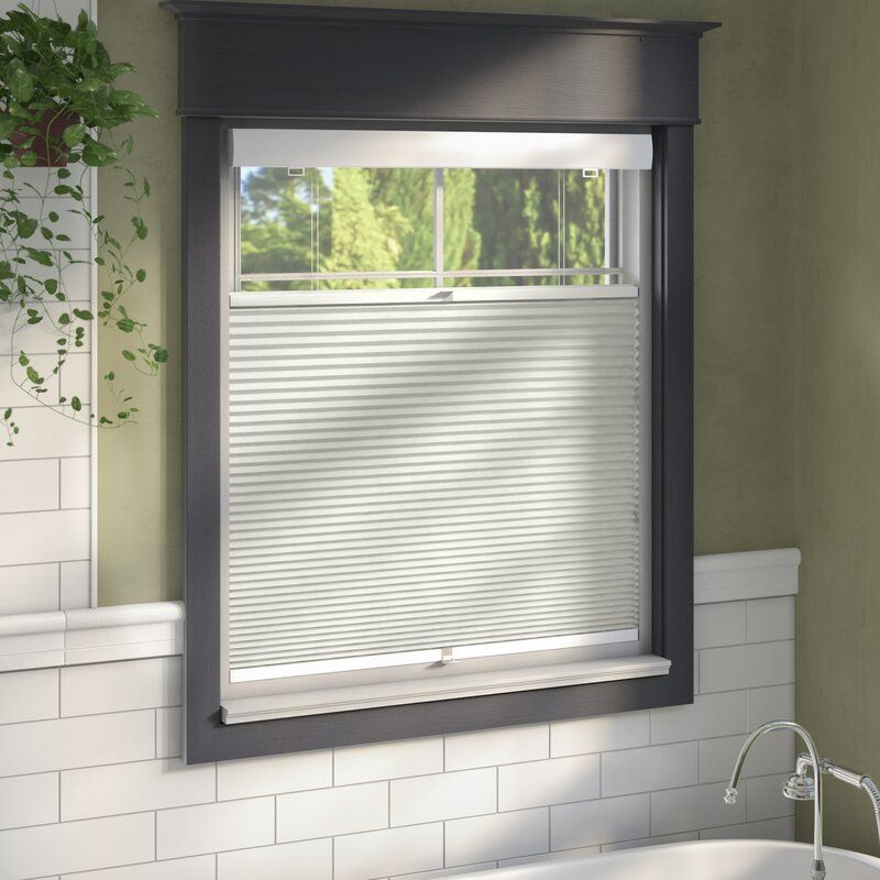 Sheba Top Down Bottom Up Blackout Cellular Shade Blackout Cellular Shades Cellular Shades Window Shades Blackout