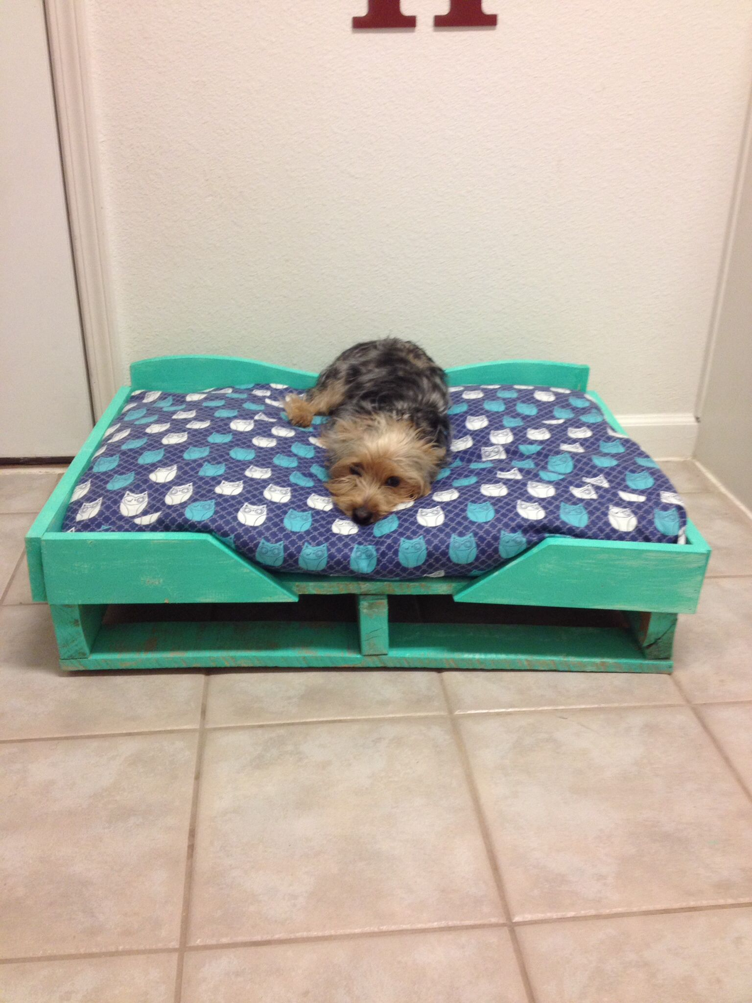 Diy Dog Bed I Also Made The Bedding From Two Old Pillows