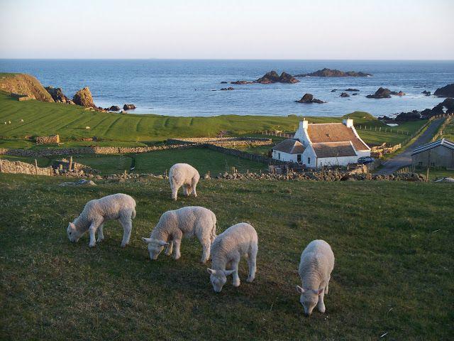 Auld Haa Guest House - Fair Isle - Shetland Islands - Scotland A ...