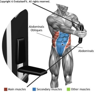 ABDOMINALS - CORE TORSION STANDING CORE MACHINE | Workouts ...