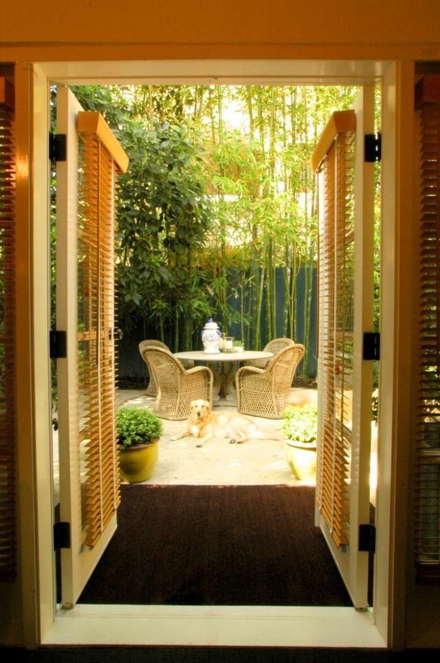 Terrassen Sichtschutz-mit Pflanzen-ideen Bambus-hochwachsende ... Pflanzen Im Garten Tipps Passenden Pflanzenarten