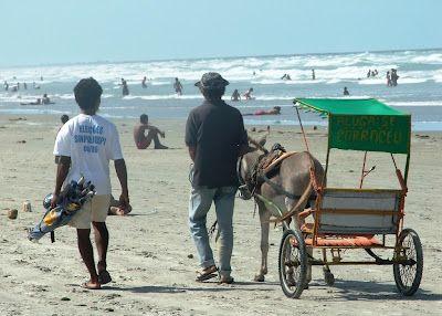 Rio_charrete na praia