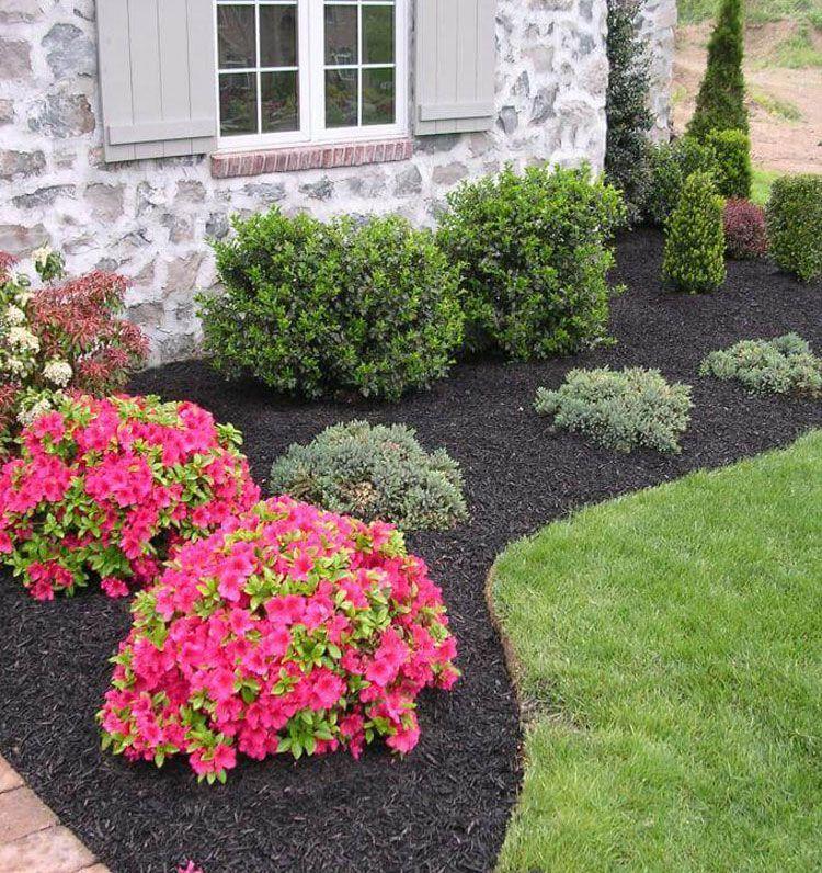 simple front yard landscape