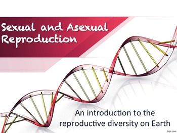 Asexual reproduction personal loans