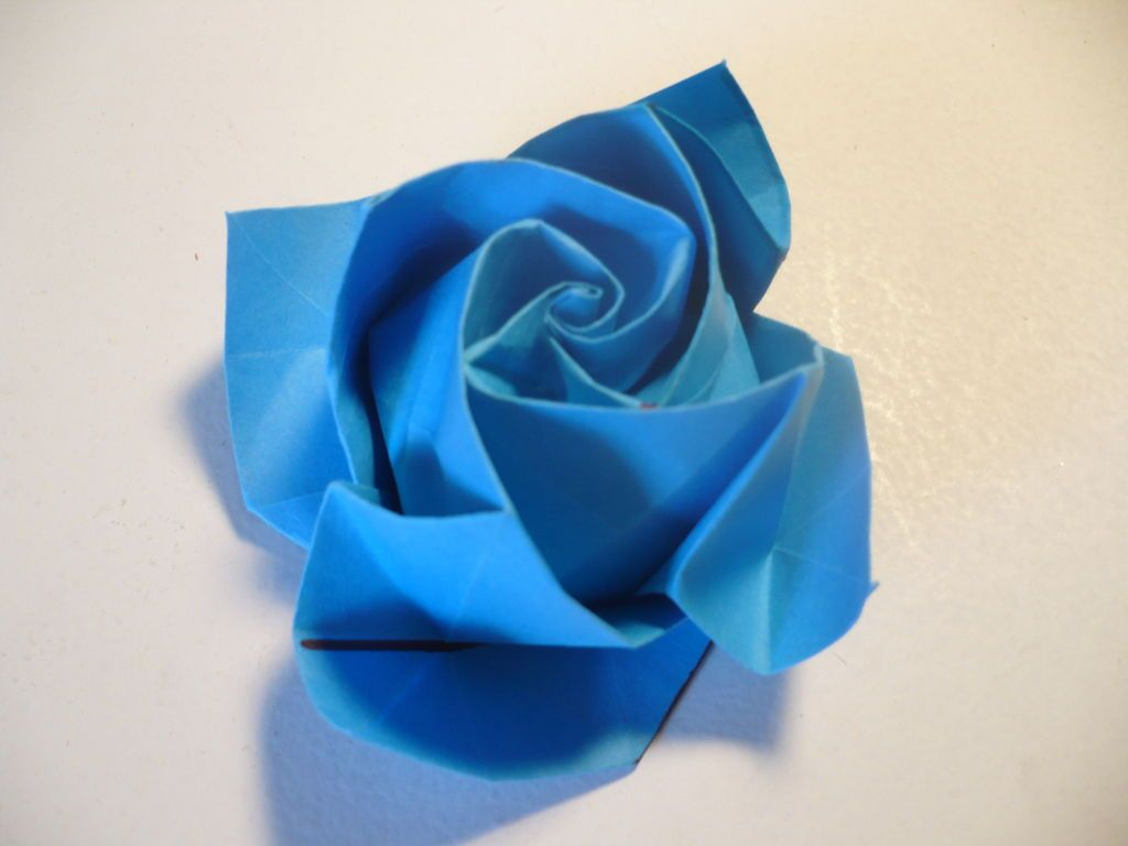 Origami Rose In Bloom Flowers Pinterest Origami Rose Origami