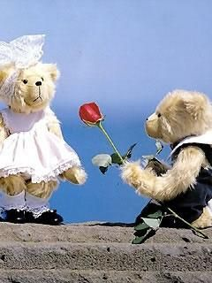 Teddy bears with red rose