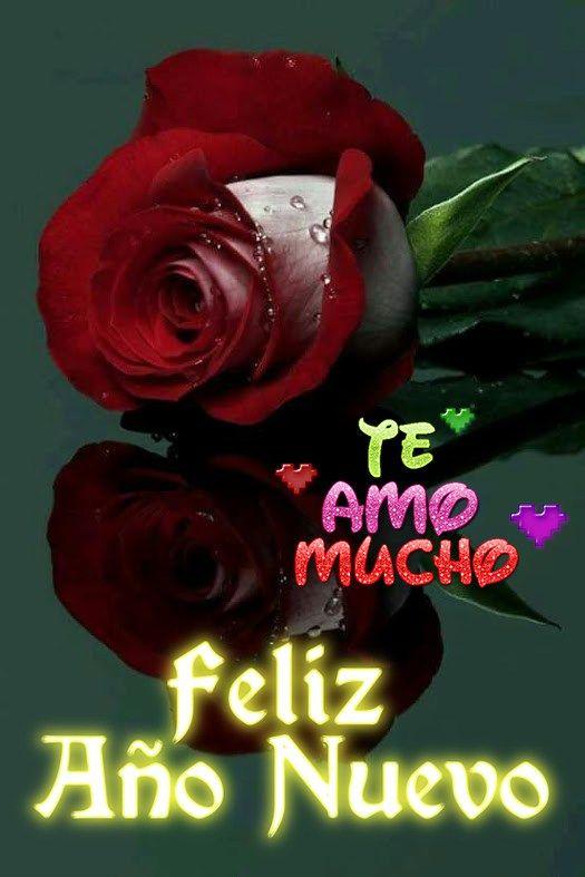 Imagenes De Flores Con Frases De Feliz Ano Para Mi Amor Imagenes