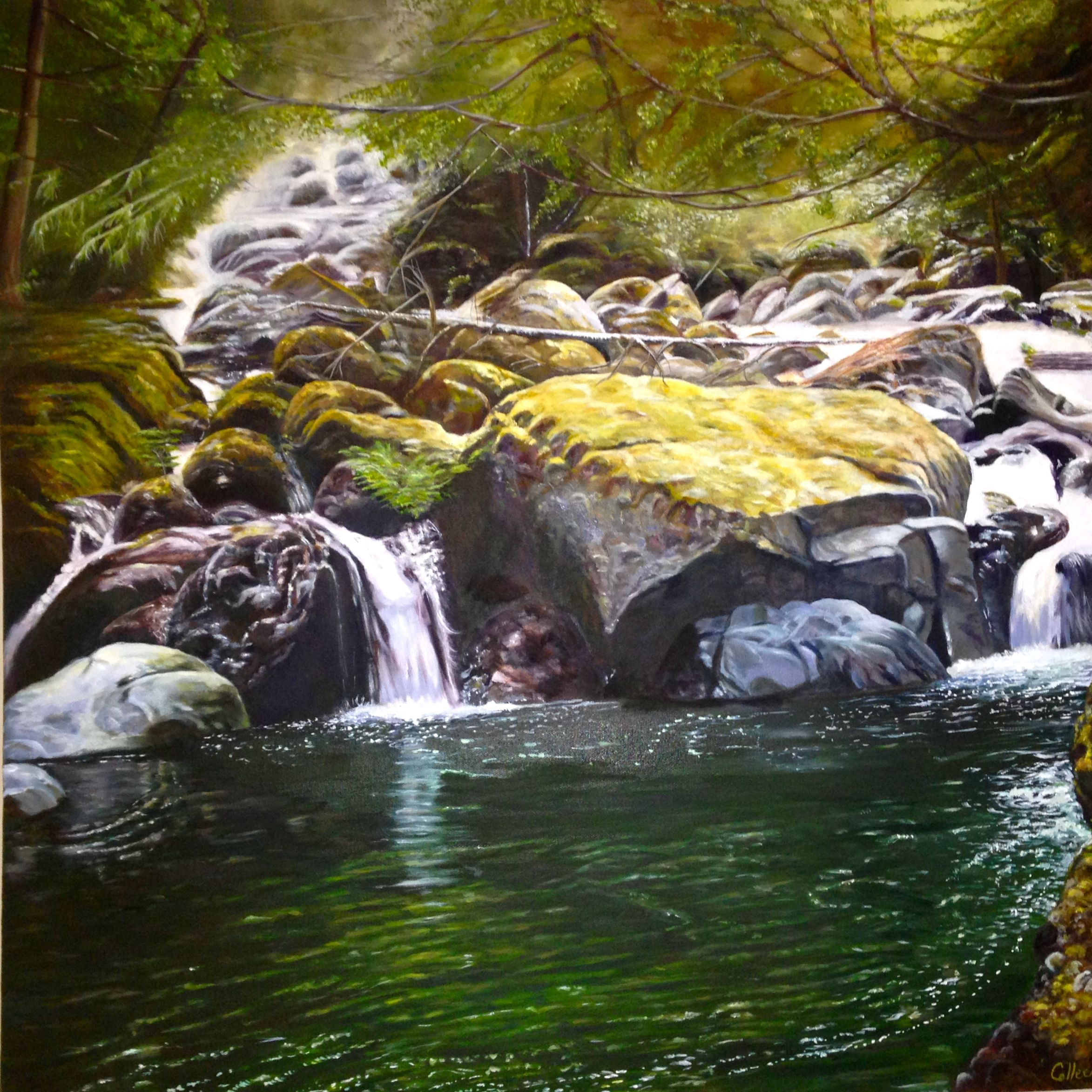 Oil painting inspired walking through National Park near Bowser, Vancouver Island.