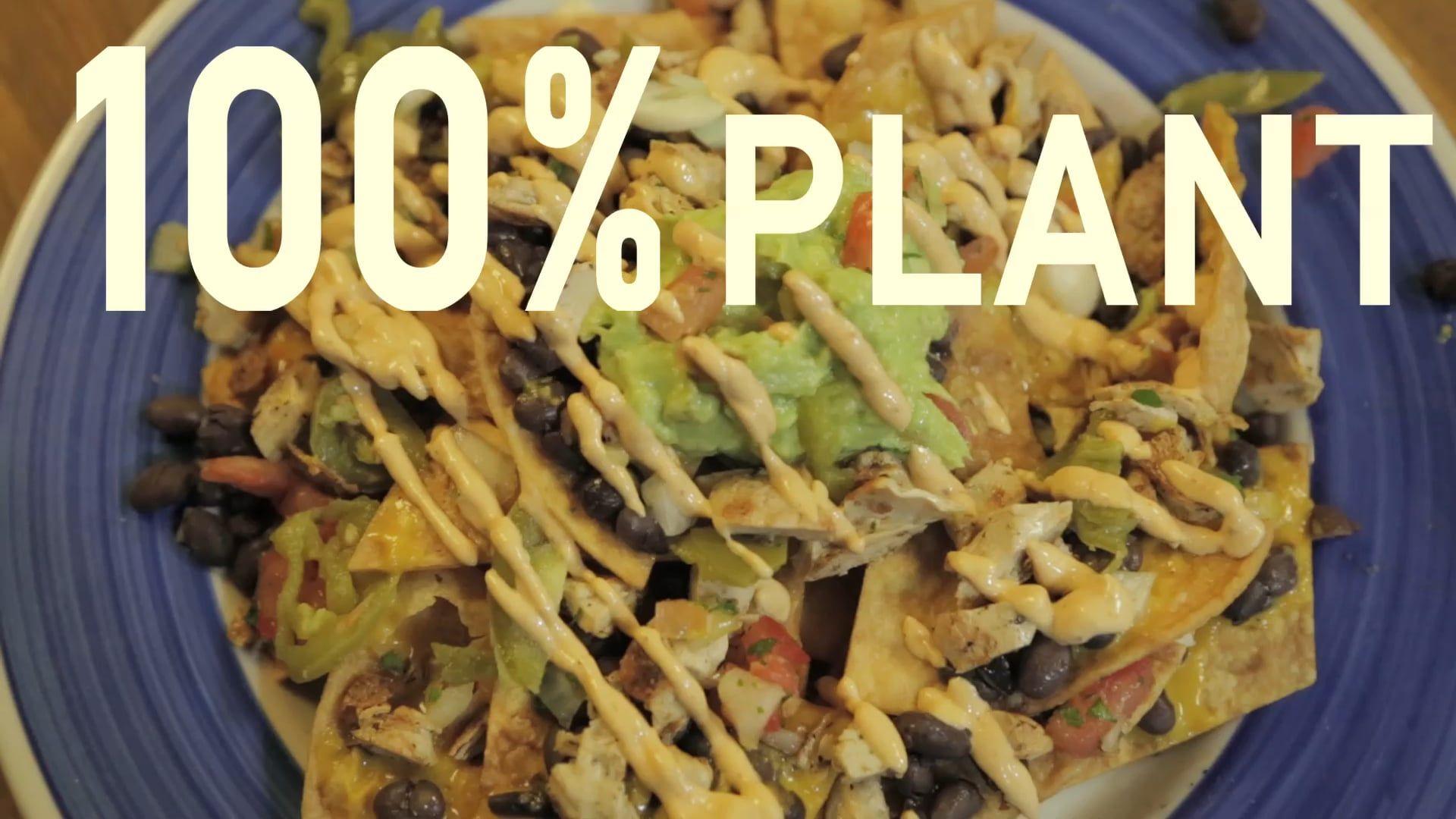 Greyhound cafemalvern seasonal ingredients lunches